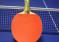 Turniej tenisa stołowego dla amatorów i weteranów – Lębork – 16 listopada 2019 r. godz. 15.00 – Miejska Hala Sporotowa